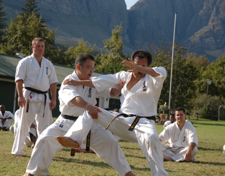 Kyokushin-kan's Kaneko Shihan and Ishizawa Shihan performing the Bunkai for the final motion of Pinan sono 5.